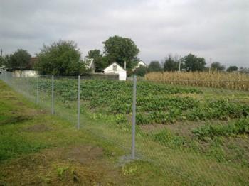 Ограждение огорода на даче - с помощью сетки