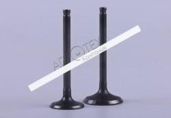 Клапаны (пара) Ø20/Ø23mm — Дельта/Альфа — Premium