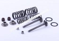Клапаны комплект (пружины, сухари, сальники, тарелки) — Дельта/Альфа