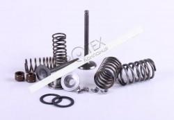 Клапаны комплект (пружины, сухари, сальники, тарелки) — Актив/Дельта/Альфа