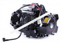 Двигатель Дельта/Альфа/Актив (110CC) — механика (с эл.стартером и карбюратором) BLACK — TATA LUX