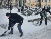 Нюансы при выборе пластиковых лопат для уборки снега