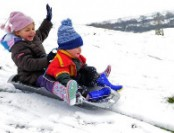Какие зимние санки купить для детей?